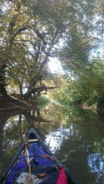 Canoeing with Up and Beyond Adventures